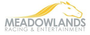 Meadowlands Analysis